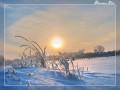 Праздник Зимнего Солнцестояния 21-22 декабря